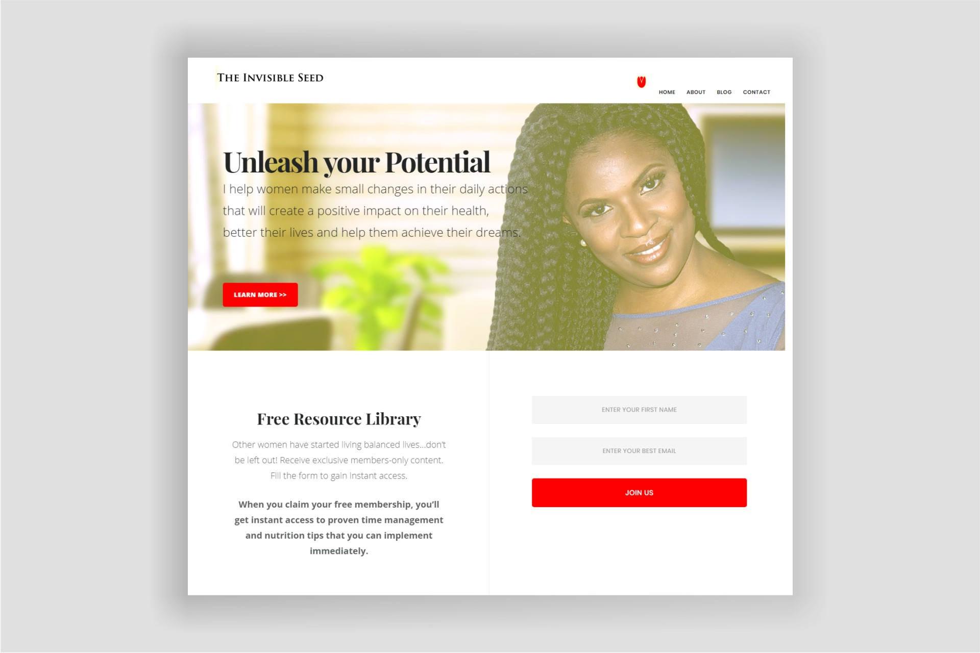 Website Design for The Invisible Seed